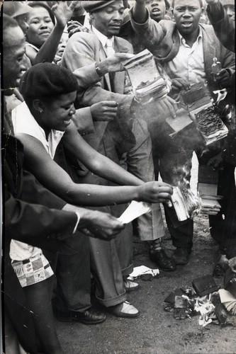 sorte-sydafrikanere-braender-deres-identitetskort-1960