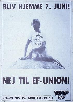 kap_boykot_euvalg