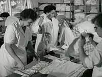 Det kollektive vaskeri i Carlsro