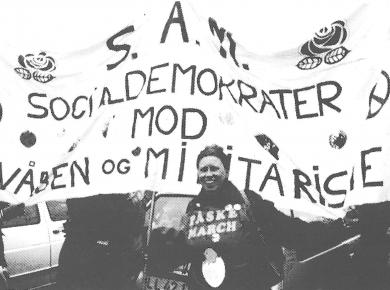 SAM-demo