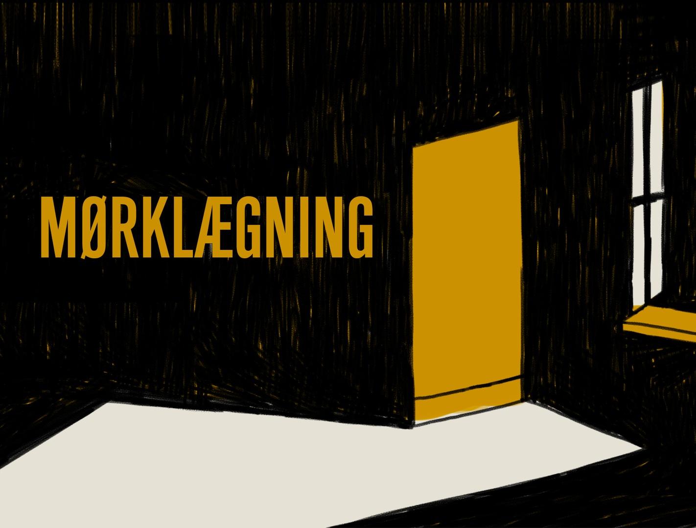 MØRKLÆGNING: Bo Lidegaard X Jes Stein Pedersen